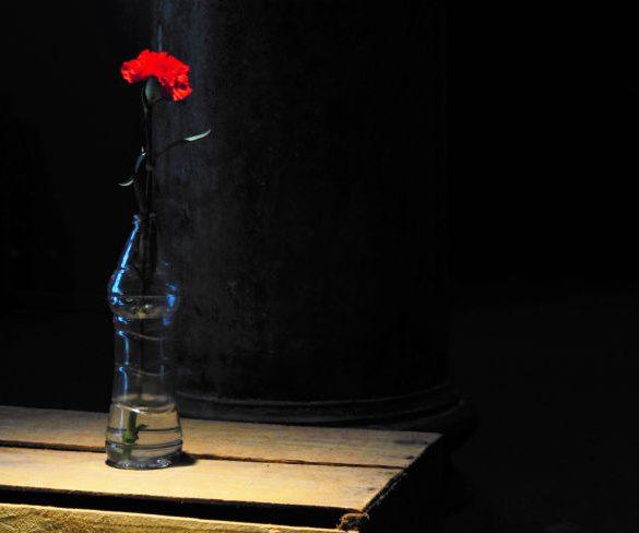 Alvenaria pulsante nas construções poéticas de Sérgio Vaz