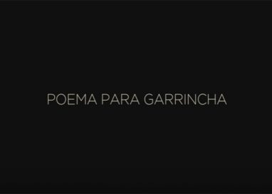 "Leitura do ""Poema para Garrincha"""