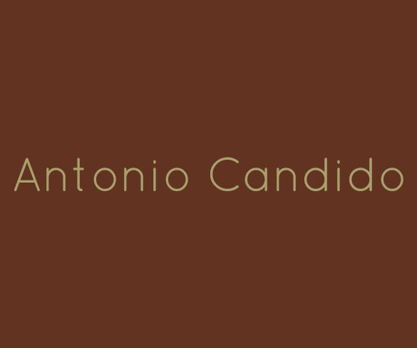 Antonio Candido, luz eterna sobre a literatura brasileira