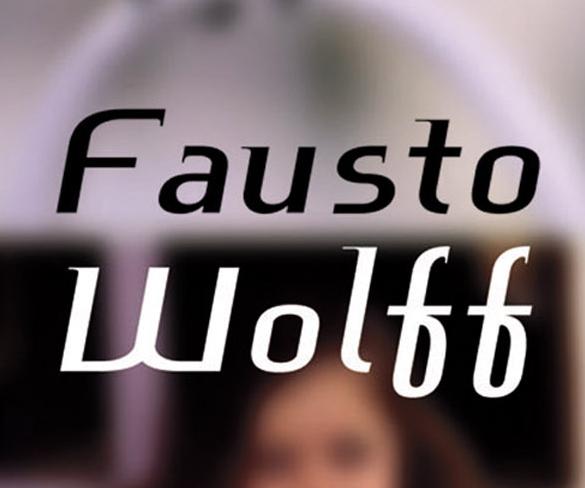 Melhores Contos, de Fausto Wolff