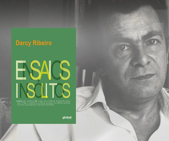 Ensaios insólitos, Darcy Ribeiro